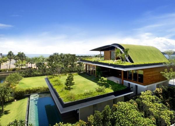 Ideia Decorar Telhado ecológico telhado ecologico.jpg3
