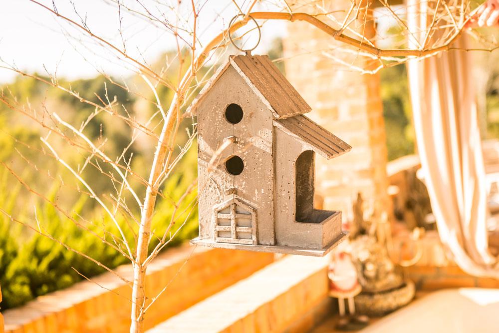 5 ideias criativas para decorar seu jardim  - 10