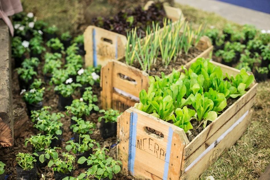 5 ideias criativas para decorar seu jardim - 2