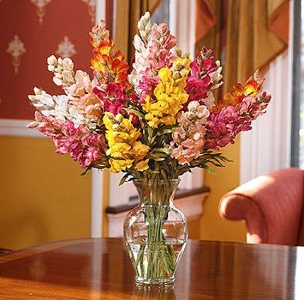 Flores artificiais x Flores reais 3