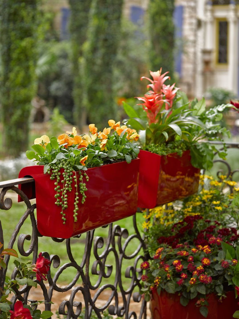Urban Gardening4