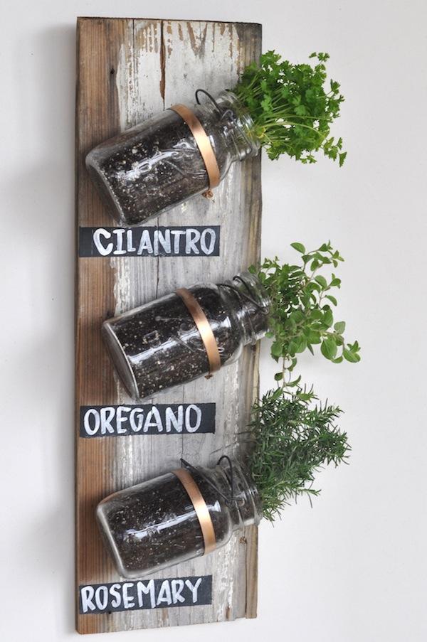 Urban Gardening5