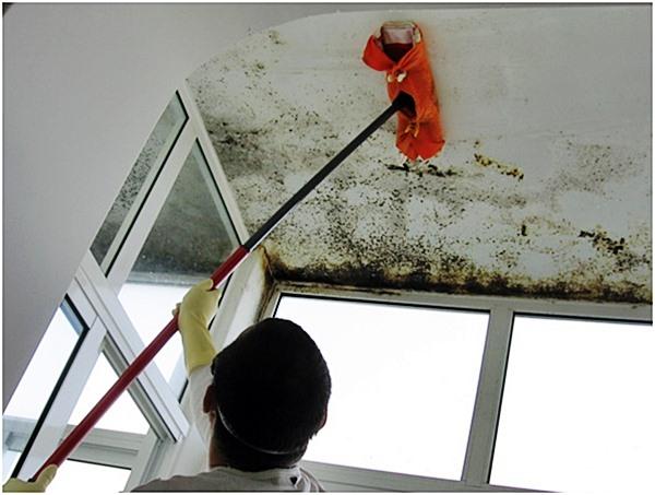 Ideia Decorar Como tratar umidade nas suas paredes como tratar umidade nas suas paredes.jpg2