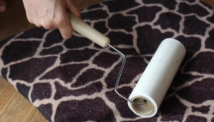 Como remover os pelos de animais em casa